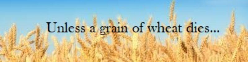 Unless a Grain of Wheat Dies...
