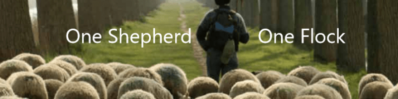 One Shepherd, One Flock