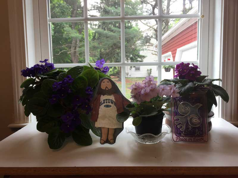 Flat Jesus Among the Violets