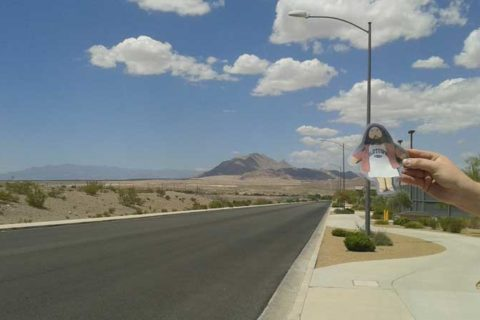 Flat Jesus Loves the Nevada Desert