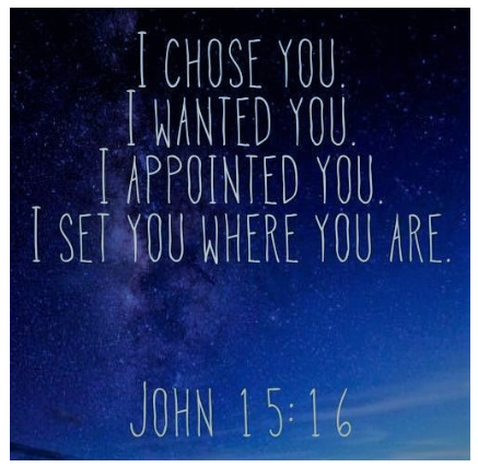 I Chose You. I Wanted You. I Appointed You. I Set You Where You Are.