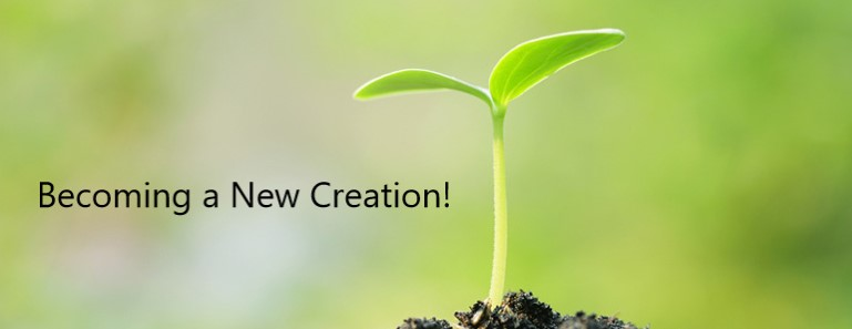 Becoming a New Creation!