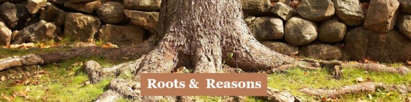Roots and Reasons